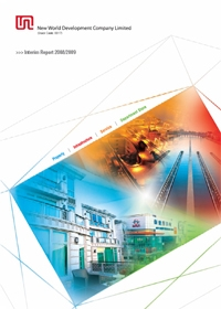 Interim Report 2008/2009